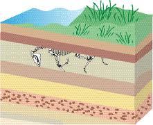 earthquake layers