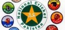 Pakistan Domestic T20 Tournament in December