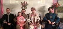 shahid afridi brother marriage
